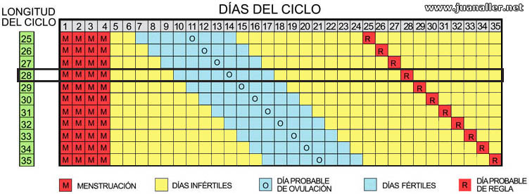 Dias Fertiles Mujer Calendario.Cual Es El Metodo Del Calendario