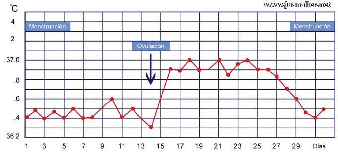 grafica-temperatura-basal-ovulacion